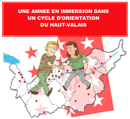Année en immersion Brigue
